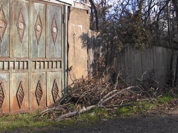 Наступают холода: в приграничных селах обогреваются фруктовыми деревьями